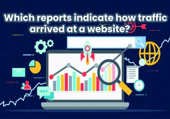 Which reports indicate how traffic arrived at a website?